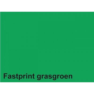 KOPIEERPAPIER FASTPRINT-50 A4 160GR GRASGROEN