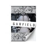 SCHRIFT GARFIELD BOYS A4 RUIT